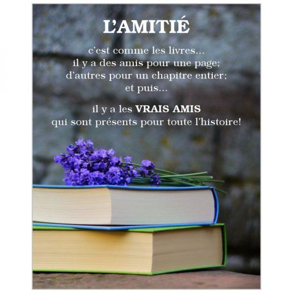 Affiche AMITIE #1